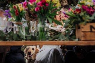 Wedding photographers Alicante, El Torrero